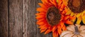 sunflowers and pumpkin on wooden backfround